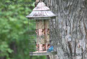 Caged Birdfeeder