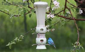 Tube Birdfeeder