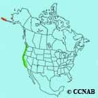 Aleutian Cackling Goose range