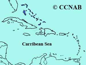 Bahama Woodstar range