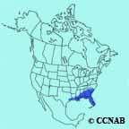 Blue Jay Southeastern range
