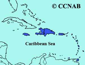 Caribbean Coot range