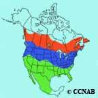 Cedar Waxwing range
