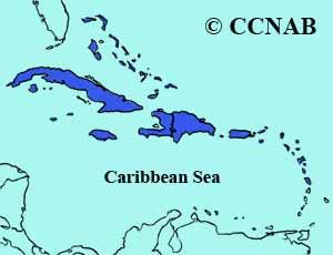 Cuban American Kestrel range