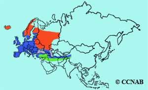Eurasian Blackbird range