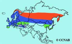 Eurasian Bullfinch range