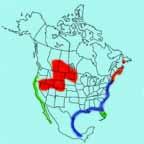 Willet Range Map