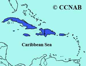 Antillean Palm-Swift range