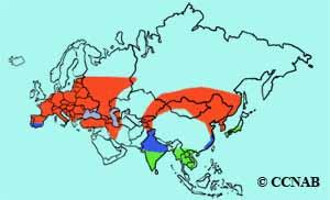 Eurasian Hoopoe Grassquit range